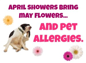 allergies logo