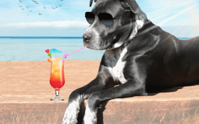 A Dog's Work vs. Vacation