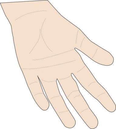 hand_palm_clip_art
